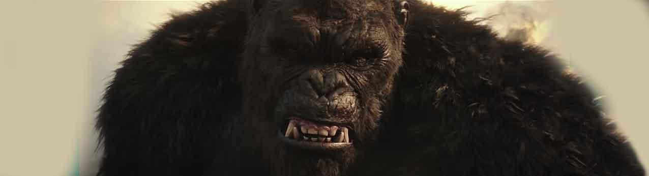 Godzilla vs Kong teaser bannière